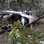Появились детали ДТП в Оргееве: полиция застала вернувшегося на место происшествия водителя