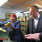 Додон: Буду и в дальнейшем прилагать все усилия для обеспечения доступа отечественной продукции на рынок РФ (ВИДЕО)