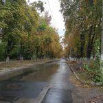 Слушания по судьбе улицы Зелинского состоятся в претуре Ботаники (ВИДЕО)