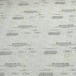 Для референдума по отставке Киртоакэ будет отпечатано 632 тысячи бюллетеней (ВИДЕО,ФОТО)