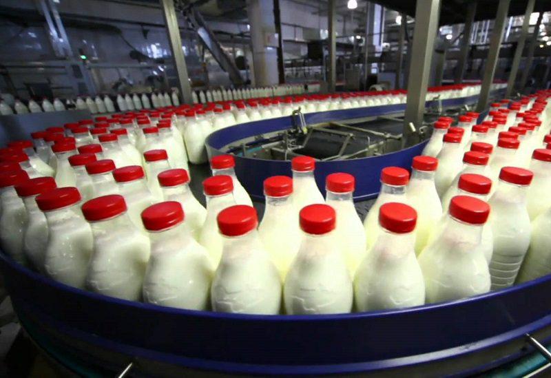 Молоко молдавского производства исчезает: количество коров снизилось до исторического минимума (ТАБЛИЦА)