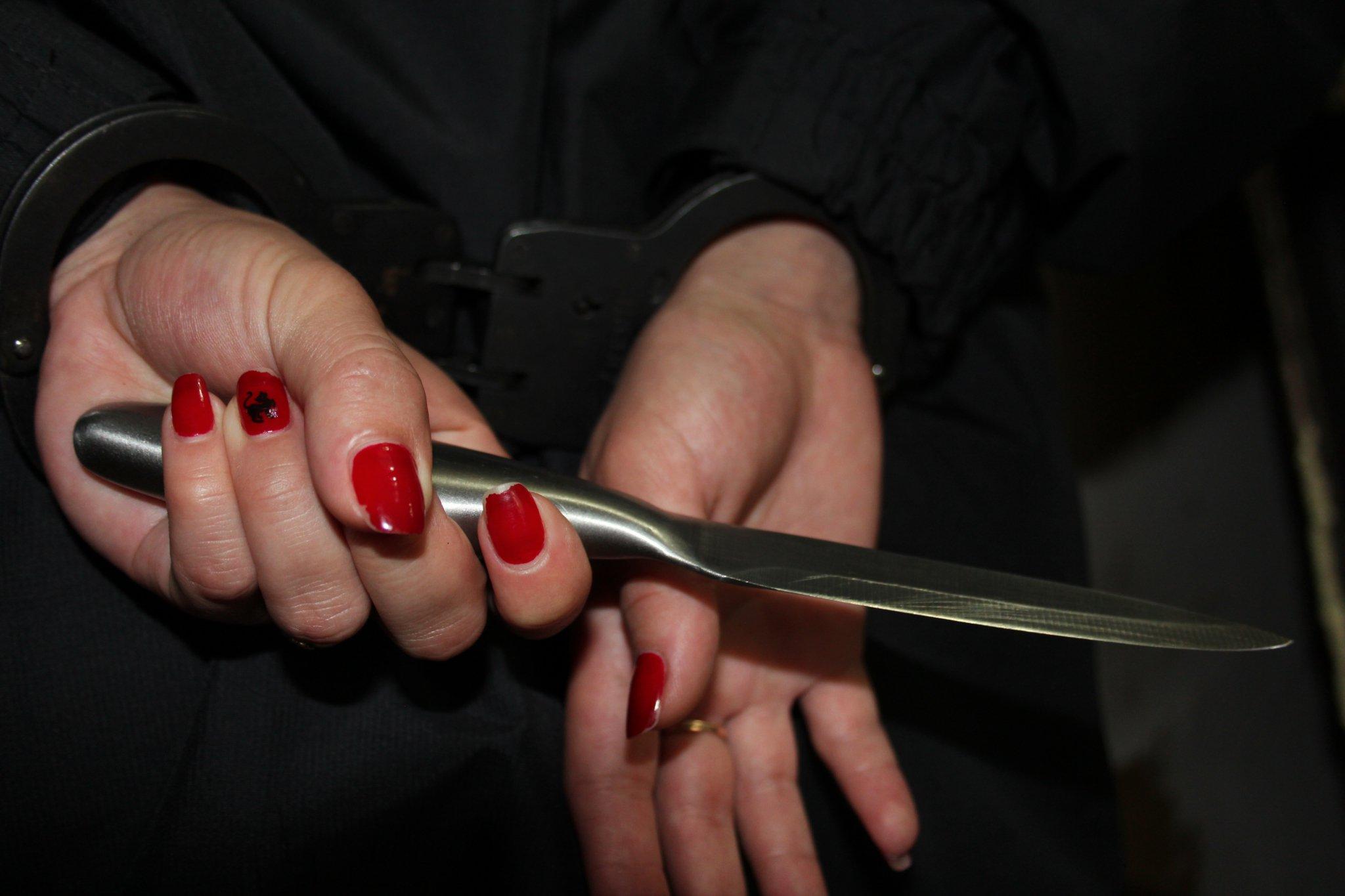 Женщину, пытавшуюся зарезать собственных детей и покончить с собой, поместили в психиатрическую больницу