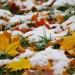 В воскресенье в Молдове ожидается снег