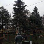 В Гидигиче нашли и красивую елку, и местные игрушки к ней: как она выглядит по сравнению с елкой-украинкой (ФОТО)