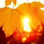 Приятная новость для жителей Молдовы: на следующей неделе потеплеет до +19!