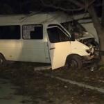 В столице уснувший за рулем водитель маршрутки врезался в дерево (ВИДЕО)