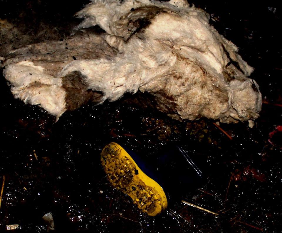 Трое детей сгорели заживо в Глодянском районе (ВИДЕО, ФОТО)