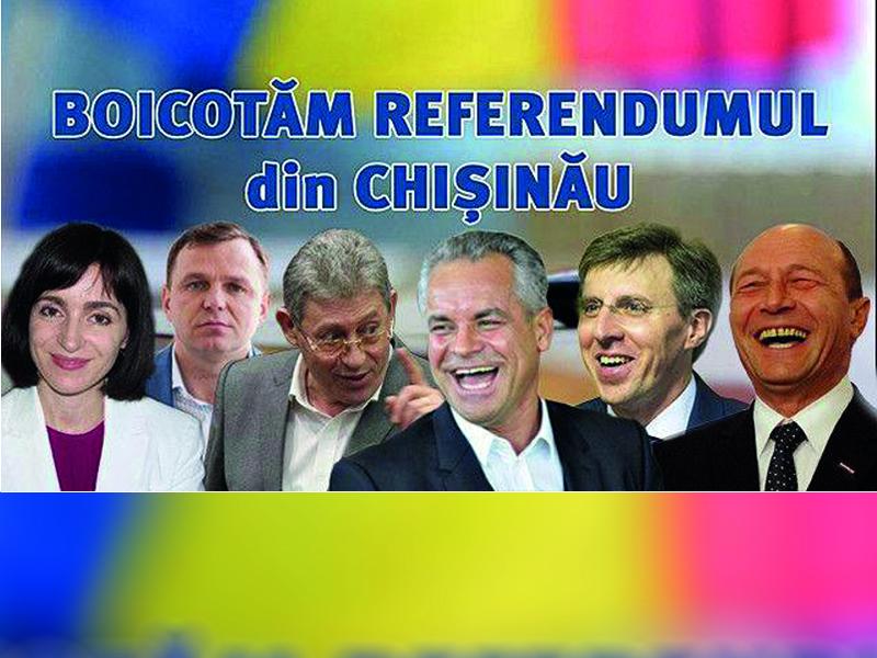 Цырдя: Референдум показал, кто служит режиму, а кто борется с ним