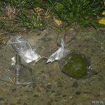 Между многоэтажками в Рыбнице нашли боевую гранату