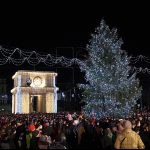 Примэрия Кишинева ищет главную новогоднюю елку для ПВНС