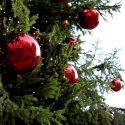 Похитители праздника: в Гагаузии воры украли наряженную ёлку