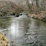 Агентство «Apele Moldovei» бьет тревогу: состояние малых рек из года в год все хуже