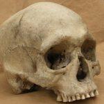 Приднестровский милиционер нашел близ Рыбницы человеческий череп