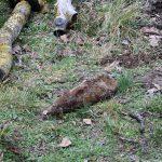 В Тирасполе обнаружен артиллерийский снаряд времён ВОВ (ФОТО)