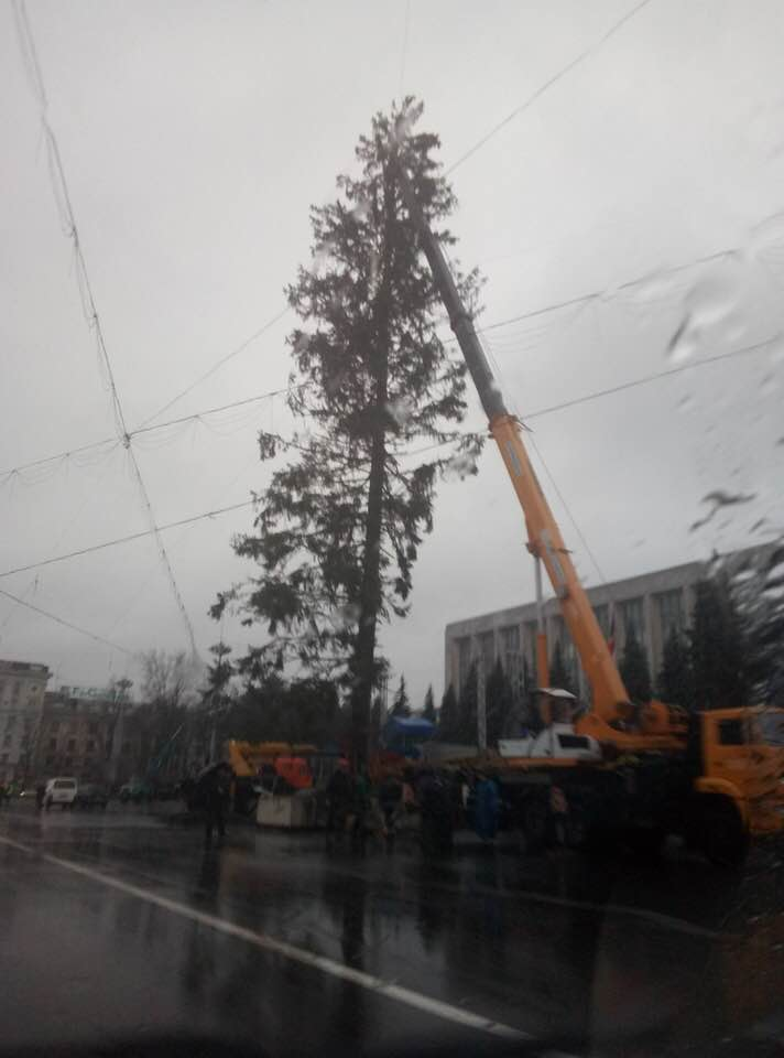 """Опубликовано видео момента, в который елка-украинка """"потеряла"""" половину ветвей"""