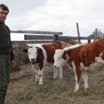 Сельское хозяйство: какие перспективы?