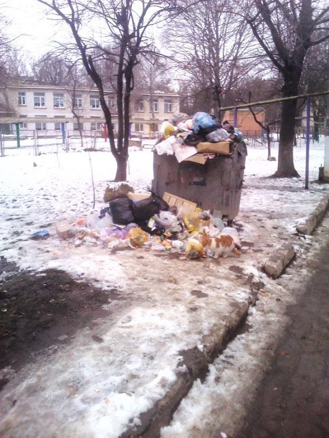 Бельцы утопают в отходах: местная власть не может справиться с мусором