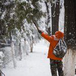Похолодание и снег обещают синоптики со следующей недели