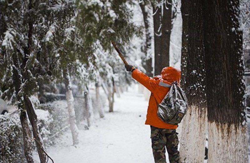 В выходные в Молдове ожидается до 12 градусов мороза