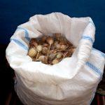 Три килограмма наркотиков были обнаружены в ходе обысков на юге Молдовы (ФОТО, ВИДЕО)