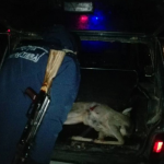 Трое вооруженных до зубов молдаван задержаны за браконьерство (ФОТО)