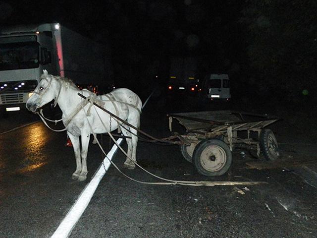 В Гагаузии автомобиль наехал на повозку: мужчина и подросток госпитализированы