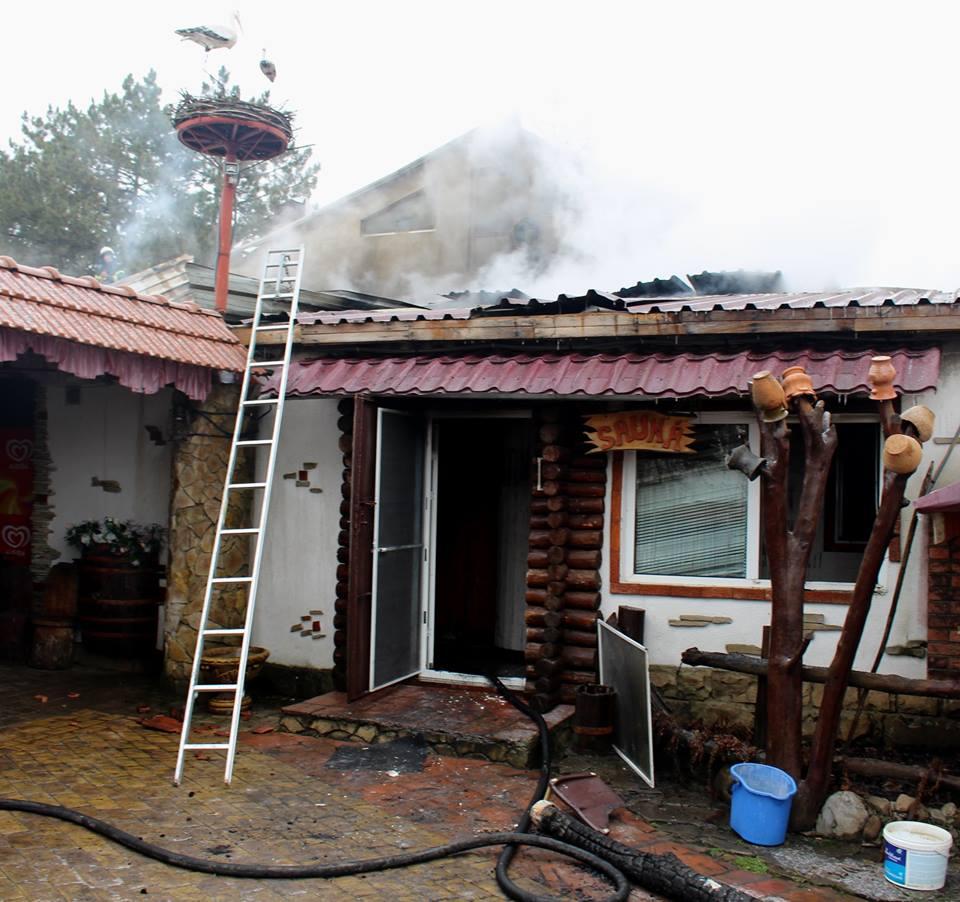 Сильный пожар в зоне отдыха в Глодянах сняли на видео