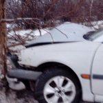 В Гагаузии водителя занесло на трассе: авто угодило в кювет и врезалось в дерево (ФОТО)