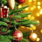В столице полным ходом идут работы по установке новогодней елки