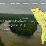 Efes Vitanta Moldova Brewery лишилась прав на марку Inima Moldovei