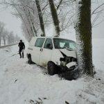В Фалештском районе микроавтобус врезался в дерево (ФОТО)