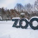 В кишиневском зоопарке приняли усиленные меры для защиты животных от холода