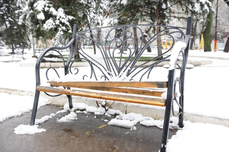 Жителей Сорок возмутил поступок вандалов в местном парке (ФОТО)
