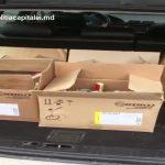 В Кишинёве полиция изъяла 70 бутылок контрафактного алкоголя (ВИДЕО)