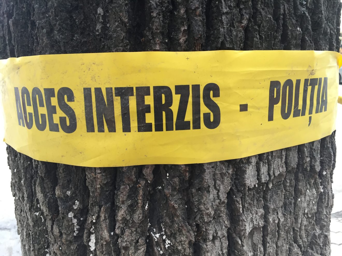 Во Флорештском районе мужчина тяпкой убил родственника