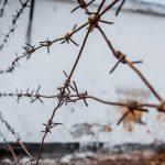 До заключенных трех пенитенциаров не добрались посылки с запретным содержимым (ВИДЕО)