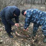Рыбаков-нарушителей с 9 кг рыбы поймали в селе Паланка (ФОТО)