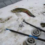 """Рыбоохрана """"свернула удочки"""" 4 рыбакам за нарушение правил (ФОТО)"""