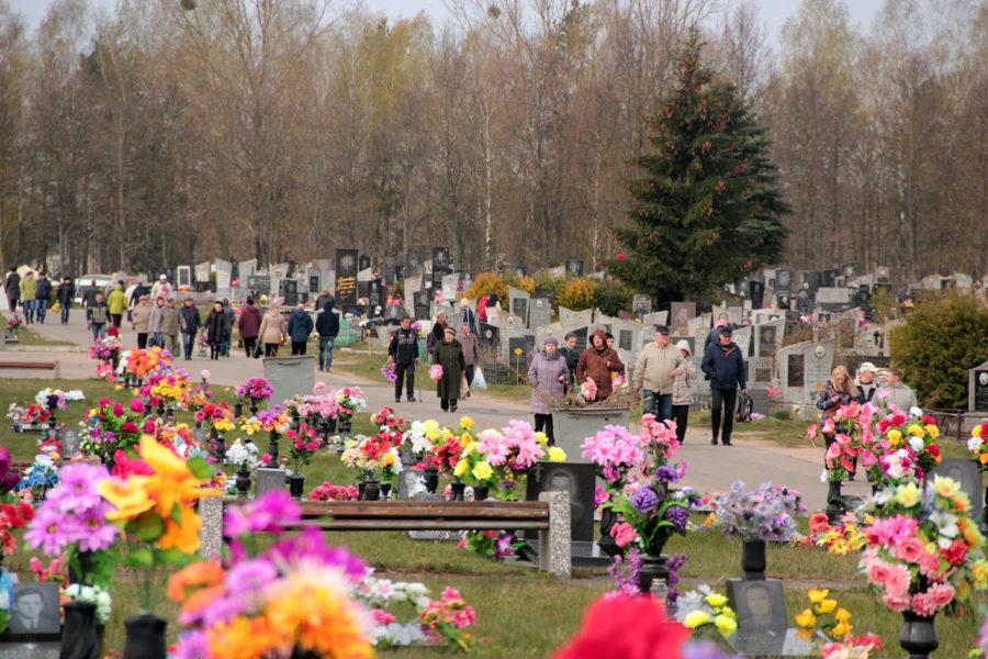 НАБПП выступило с предостережениями жителям Молдовы в преддверии Радоницы