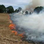 В Приднестровье вновь горят поля: огонь погубил урожай пшеницы, кормовую траву и спецавтомобиль