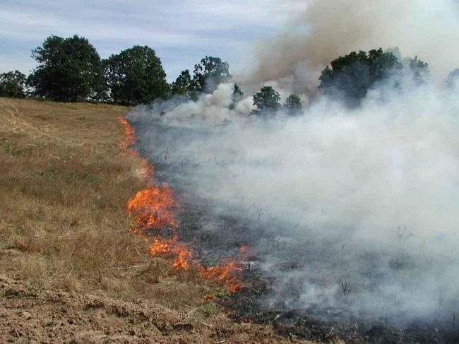 Синоптики предупреждают: пожарная опасность в Молдове сохраняется
