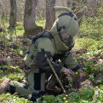 В Каушанском районе саперы обезвредили 24 снаряда времен Второй мировой войны (ФОТО)