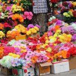 В преддверии Дня влюблённых Налоговая служба проверит цветочные магазины