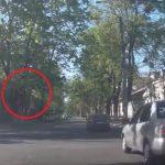 """Проехавшие перекресток на красный четыре """"барана"""" возмутили столичных водителей (ВИДЕО)"""