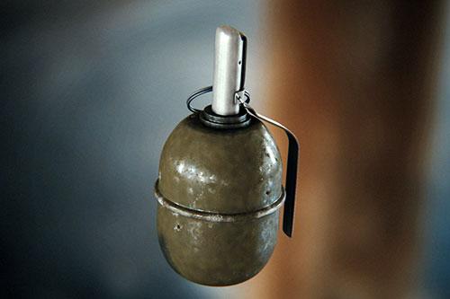 Молдаванин обнаружил боевую гранату в купленном им доме