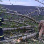 Град и сильный ветер нанесли ущерб некоторым населенным пунктам страны (ФОТО, ВИДЕО)