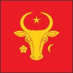 С завтрашнего дня по инициативе президента каждой примэрии вместе с государственным передадут и исторический флаг Молдовы