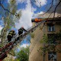 На ремонт сгоревшей крыши в Институте зоологии потребуется более 4 млн леев
