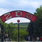 Кишинёвский зоопарк временно закроют на следующей неделе