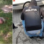 Найдена голова девушки, убитой и расчлененной в Грэтиештах